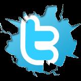 10 consejos, ganar seguidores entwitter